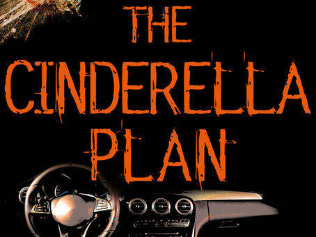 The Cinderella Plan by Abi Silver