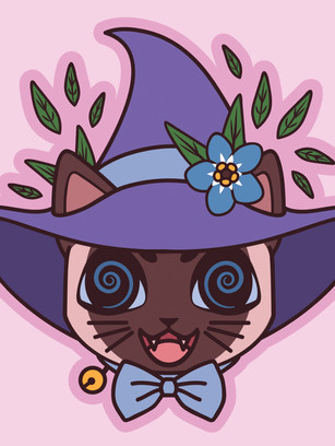 BM_WITCH-cat.jpg