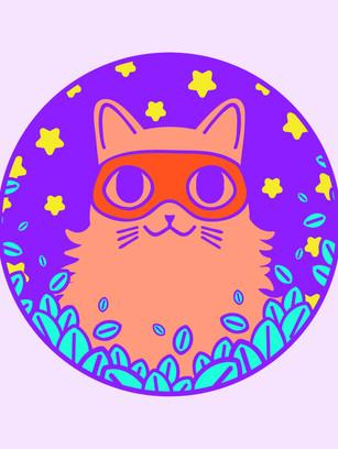 CatBandit-1-website.jpg