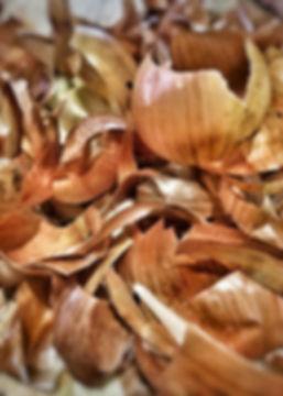 Onions skins.JPG