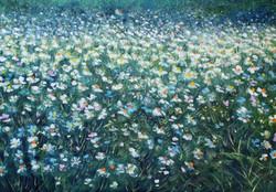Rif. 3440 - Camomilla in fiore