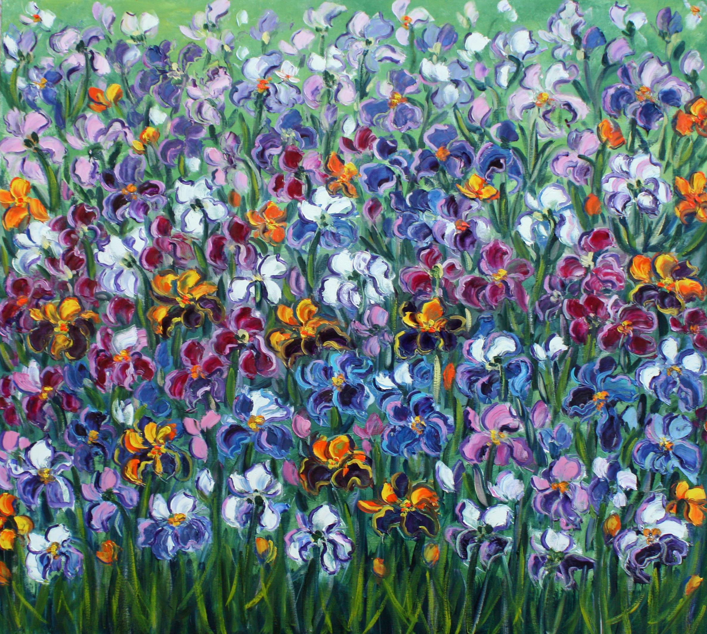 Rif. 6037 - Iris multicolori