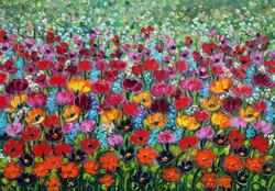 Rif. 0428 - Tulipani multicolori