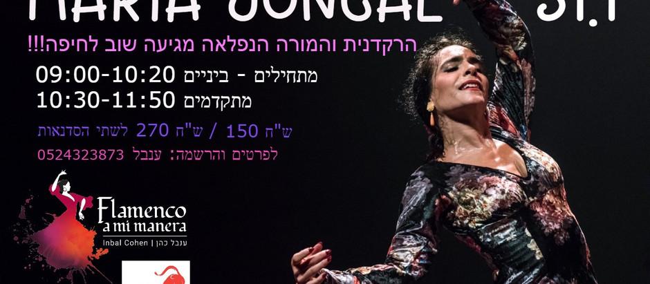 מריה חונקל מגיעה שוב לחיפה!!!