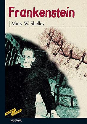 Frankenstein, de Mary W Shelley