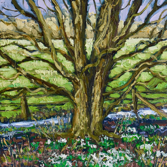 Contemporary english landscape in east anglia with early spring tree landscape by Halima Washington-Dixon