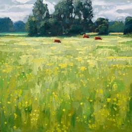 Contemporary english landscape water meadows sudbury suffolk  by Halima Washington-Dixon
