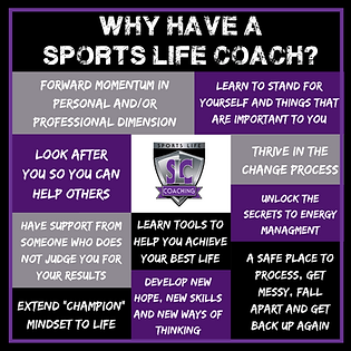 why have a coach.png