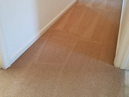 Why DIY carpet cleaning may not be good