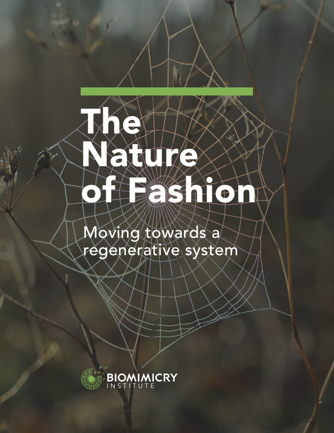 The Nature of Fashion - Biomimicry Insti