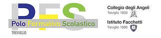 logo pfs.jpg