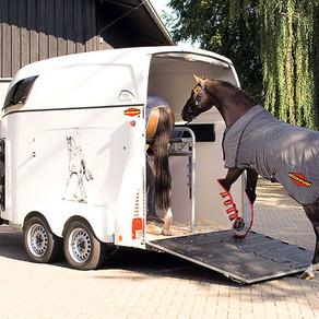 Trauma nach Unfall                                      mit Pferdeanhänger