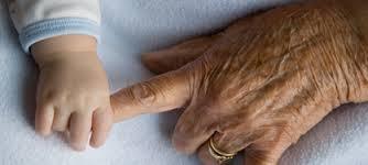 DEP 4464 Psychology of Aging