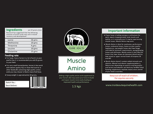 Muscle Amino