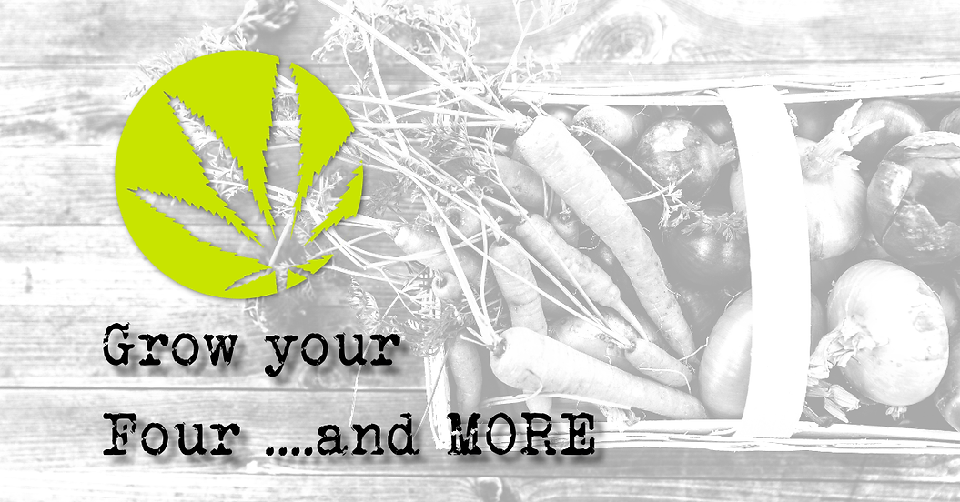 Grow your four and more banner (3).png