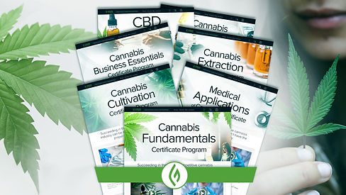 We are cannabis Green Flower education.j