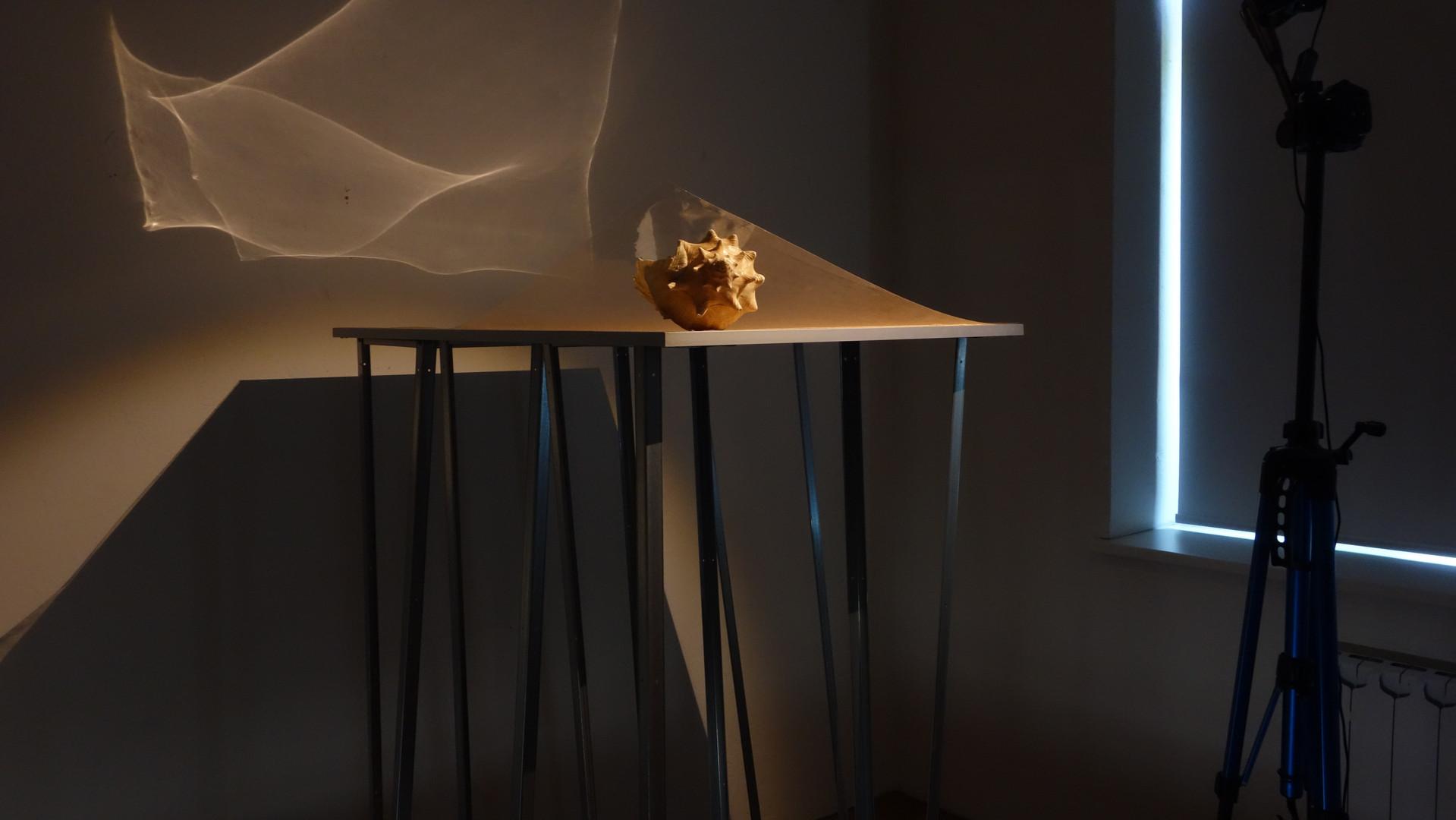 sculpture #1. fragment
