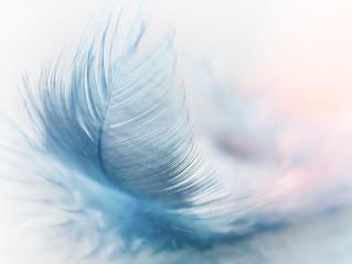Un soin relaxant à partir d'un massage à la plume vous tente-t-il?