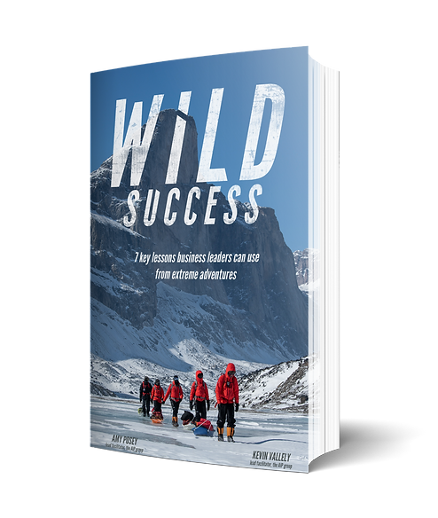WildSuccess_BookCover_Mockup_edited.png