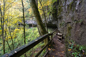 10/8/2020 – 10/11/2020 Mammoth Cave National Park