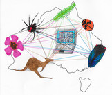 Episode 65: Making Connections – linking data on biodiversity - IBAHCM Naturally Speaking