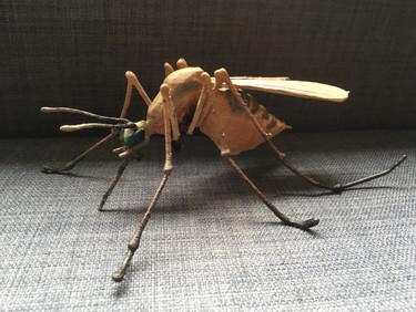 Mosquito Award - IBAHCM Bioelectronics Unit UofG