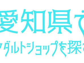 愛知県のアダルトショップ