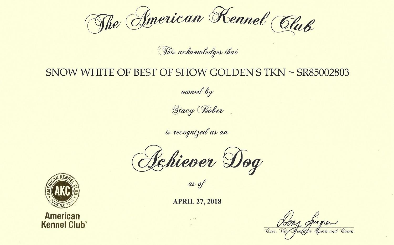 snow white achiever dog title_edited.jpg