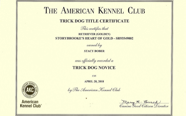 trick dog titles alice_edited.jpg
