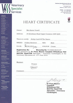 Declan heart