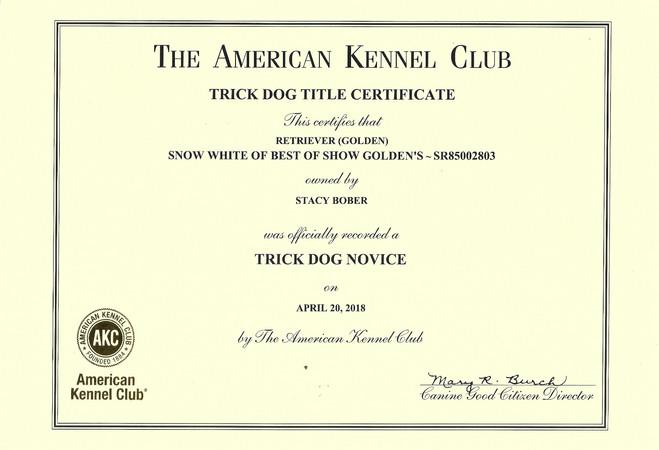 trick dog titles snow white_edited.jpg