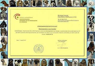 Hondenhotel Urok & Dreams