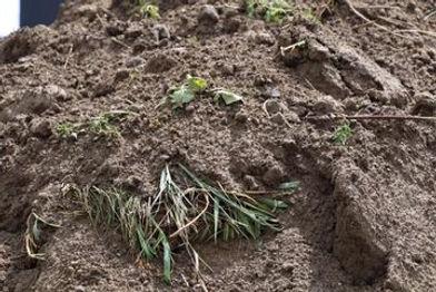 aarde en graszoden