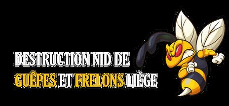Contactez destruction nid de guêpes et frelons dans la région liègeoise par mail ou par téléphone afin de vous débarrasser de votre nid d'hyménoptères dans les plus brefs délais.