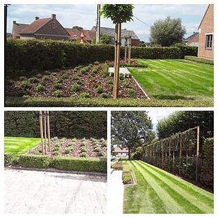 tuinaanleg en onderhoud door Tuinen De Trai