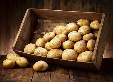 aardappelen Van roey L & Zn Lier