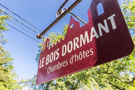 LE BOIS DORMANT - 07
