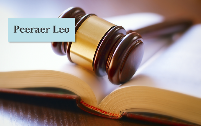 Individuele Studiebegeleiding Rechten - Leo Peeraer