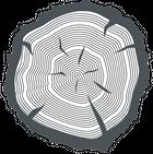 plankenvloeren ranst