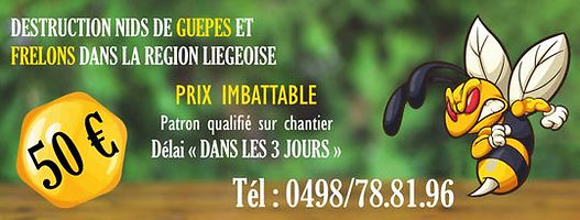Contactez destruction nid de guêpes et frelons dans la région liègeoise par mail ou par téléphone afin de vous débarrasser de votre nid d'hyménoptères dans les plus brefs délais. à Liège