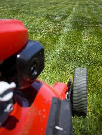 8735/Lawnmowers (442600) 1.jpg