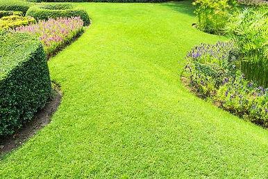 Stadstuin of landschappelijke tuin