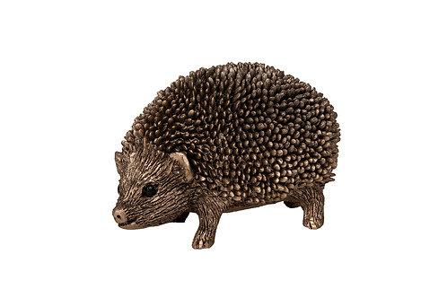 Zak-Hedgehog Walking