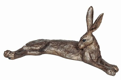 Honeysuckle - Large lying Hare