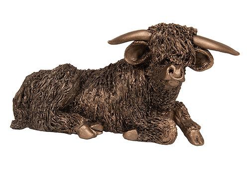 Highland Bull Resting