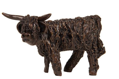 Highland Bull Standing