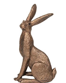 TM070 Tobias Large Hare.jpg