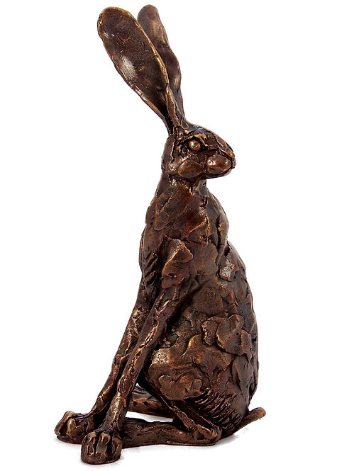 Sitting Hare looking back