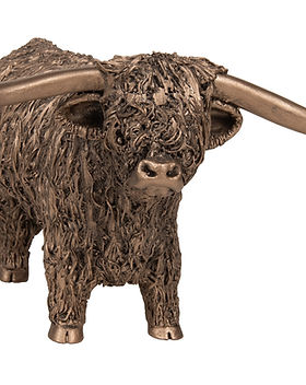 VB010 Highland Bull Standing (Large).jpg