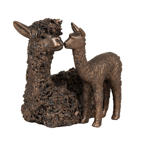 Alpaca with Cria